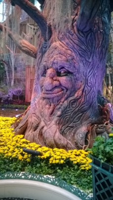 Talking tree in Bellagio Conservatory