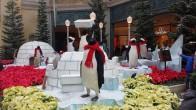 p.p.p.p.p Pick up a penguin
