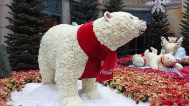 The first Coca Cola Xmas advert I saw this year (honest !)