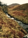 Flowing through the heather