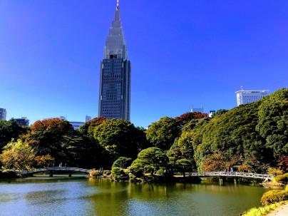 Not America, Shinjuku Gyoen, National Park